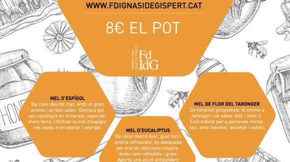 Nueva campaña de promoción de la FdIdG: Venta de miel