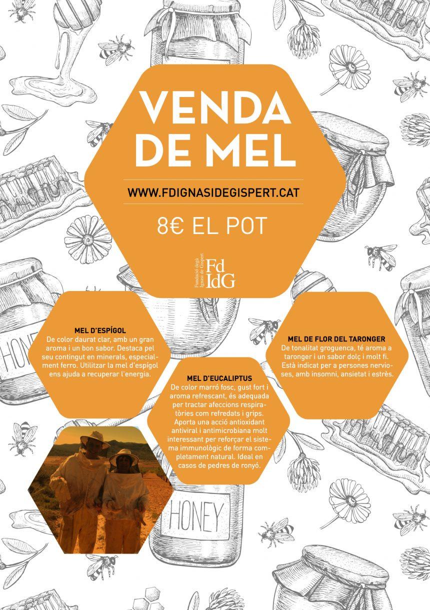Nova campanya de promoció de la FdIdG: Venda de mel